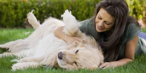 Estudos comprovam que ter um cão ajuda na saúde física e emocional. E mais, cães podem detectar câncer