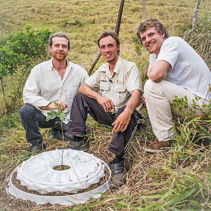 Conheça os três brasileiros premiados internacionalmente por tecnologia de restauração florestal