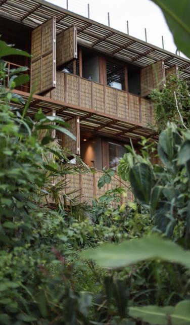 Hotéis e villas do grupo Barracuda adotam práticas de turismo sustentável e responsável